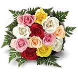 12 MultiColor Roses