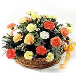 24 Carnations in Basket