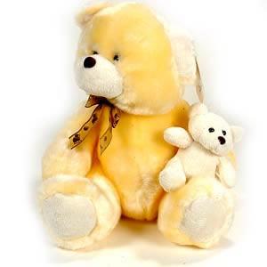 Pair Teddy