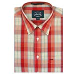 Allen Solly Farrago Check Shirt - 39