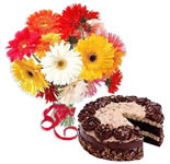 Chocolate Cake With Gerberas