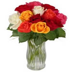 12 Mixed Roses in a Vase