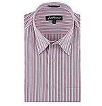 Park Avenue Striped Shirt