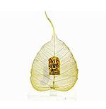 Ganesh Peepal Leaf
