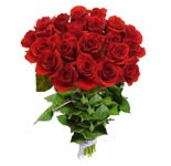 Morning Glory- 50 Red Roses Bunch