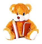 Studious Teddy
