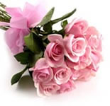 12 Pink Rose Bunch